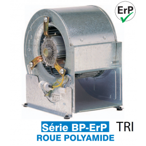 Ventilateur centrifuge basse pression BP-ERP 12/9MC 6P
