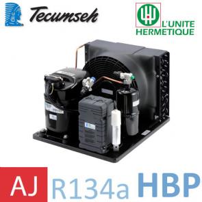 Groupe de condensation Tecumseh CAJN4492YHR - R-134a