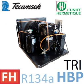 Groupe de condensation Tecumseh TFHT4518YHR - R-134a