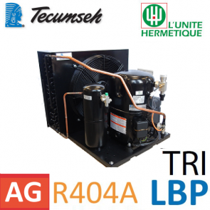 Groupe de condensation Tecumseh TAGT2522ZBR - R404A, R449A, R407A, R452A