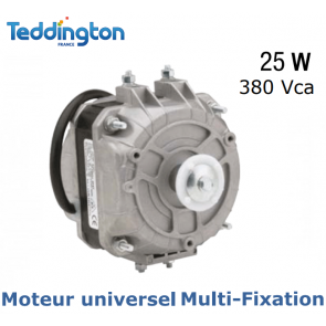 Moteur universel Multi-Fixation TF M25W 380V de Teddington